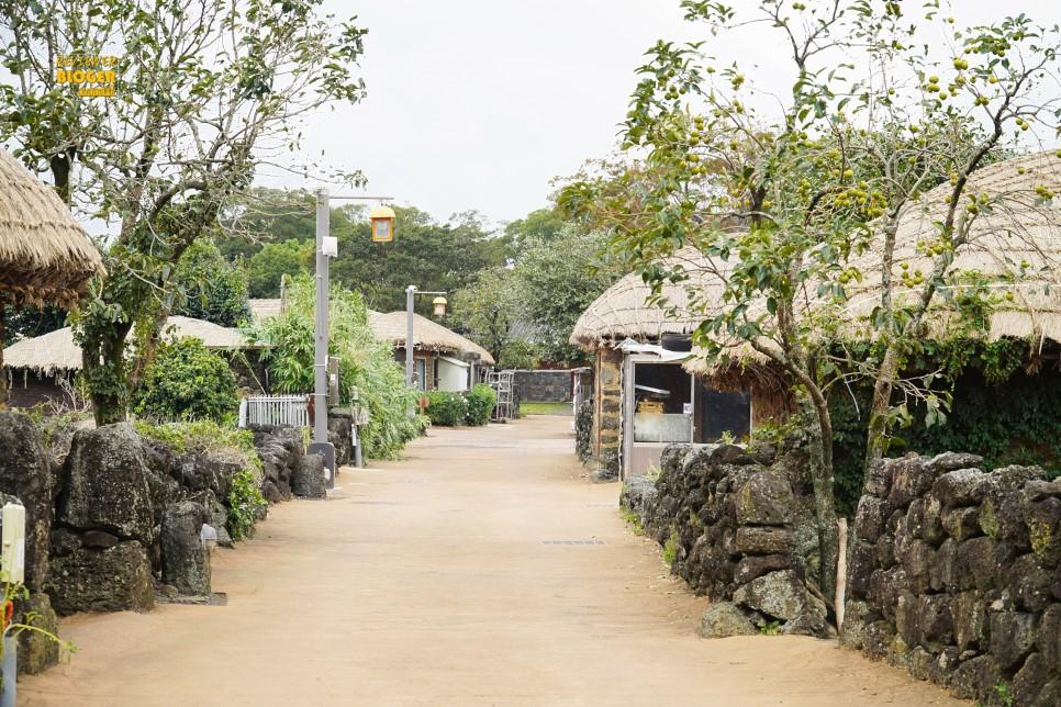 Nếu đến Jeju nhất định đừng bỏ lỡ nơi này nhé