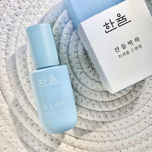 Gel Trị Mụn Mentha Trouble Spot Gel Hanyul